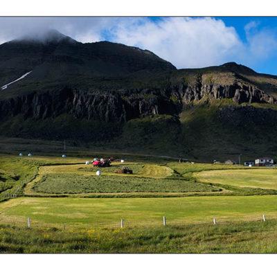 Tekin á ströndum við tjaldstæði Ferðafélags íslands. Sigma SD10 Panorama